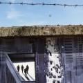 Graffiti Street-art- Burri su stradone Santa Lucia Verona