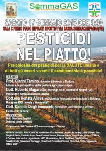 SommaGas Pesticidi nel piatto conferenza 2014